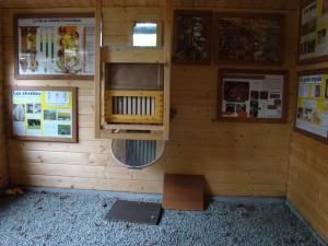 API abeilles élevage (40)