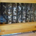 API ruche didactique Caramand (2)